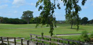 Bobby Jones nature trails reopened |  Sarasota