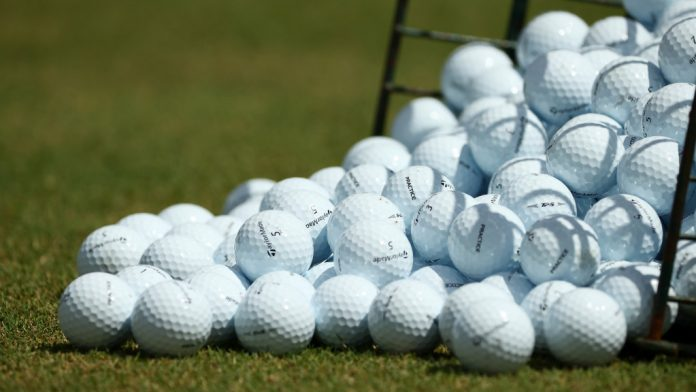 Planned Nicklaus facility painted as a party hub,