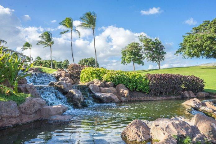 Get to know the brand worn by Christina Kim: Oahu Golf Apparel